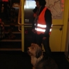2009_alltagskurs_DSC05492