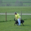 2009_dogdancing_DSC03722