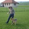 2009_dogdancing_DSC03729