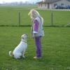 2009_dogdancing_DSC03739