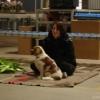 2009_dogdancing_schnuppi_DSC03601