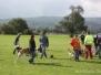 Hundeführerschein 2010