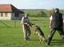 Weiterbildung Kursleiter: Kurs mit Hanspeter Schaller in Wigoltingen Oktober 2008