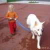 2008_therapiehunde_DSC01759