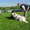 2008_therapiehunde_DSCN2845