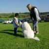 2008_therapiehunde_DSCN2848