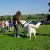 2008_therapiehunde_DSCN2851