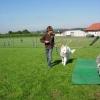 2008_therapiehunde_DSCN2866