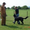 2009_training_svaholming_august_DSC04953