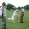 2009_training_svaholming_august_DSC04992