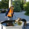 2009_vorbereitungskurs_DSC04192