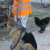 2009_vorbereitungskurs_DSC05080