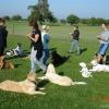 2009_vorbereitungskurs_DSC05174