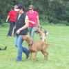 2009_training_svaholming_juli_100_5471