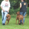 2009_training_svaholming_juli_100_5473