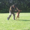 2009_training_svaholming_juli_100_5578