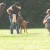 2009_training_svaholming_juli_100_5635