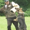 2009_training_svaholming_juli_100_5933